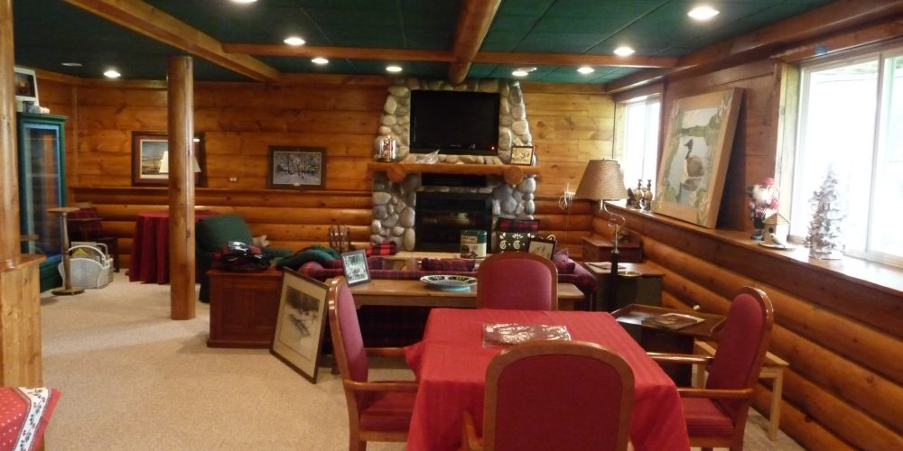 Log Cabin Basement (11)